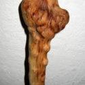 Bastón de acebuche