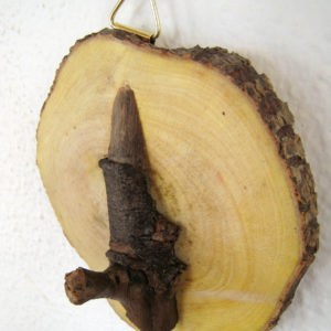 perchero tronco
