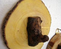 Percha individual de tronco